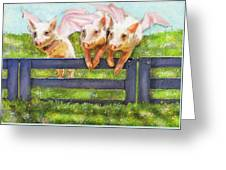 If Pigs Could Fly Greeting Card by Jane Schnetlage