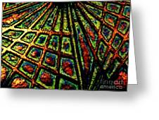 Illusions Greeting Card by Lori-Anne Fay