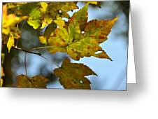 Ilovefall Greeting Card by JAMART Photography