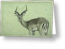 Impala Greeting Card by James W Johnson