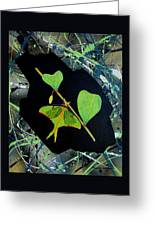 Imperfect IIi Greeting Card by Micah  Guenther
