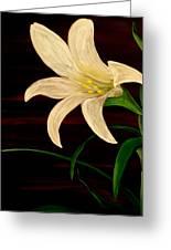 In Bloom Greeting Card by Mark Moore