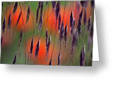 In the Meadow Greeting Card by Heiko Koehrer-Wagner