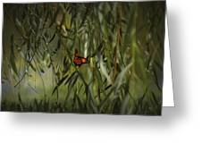 in the memory of Papillon Greeting Card by Mario Celzner