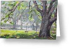 In The Shade Of The Big Tree Greeting Card by Ylli Haruni
