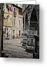 In The Shadow Greeting Card by Joan Carroll