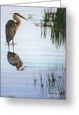 In The Shallows Greeting Card by Deb LaFogg-Docherty