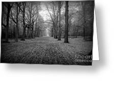 In Your Darkest Hour Greeting Card by Photodream Art