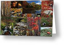 Incredible New England Fall Foliage Photography Greeting Card by Juergen Roth
