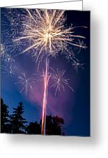 Independence Day 2014 1 Greeting Card by Alan Marlowe