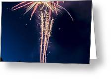 Independence Day 2014 7 Greeting Card by Alan Marlowe