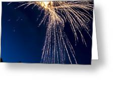 Independence Day 2014 8 Greeting Card by Alan Marlowe