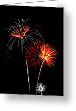 Independence Day  Greeting Card by Saija  Lehtonen