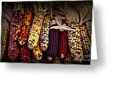 Indian Corn Greeting Card by Elena Elisseeva