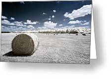 Infrared Bales Greeting Card by Scott Bean
