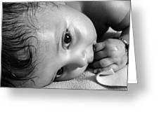 Innocence Greeting Card by Makarand Purohit