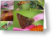 Insect Macro Photography Art Greeting Card by Juergen Roth