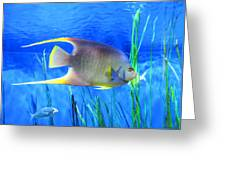 Into Blue - Tropical Fish By Sharon Cummings Greeting Card by Sharon Cummings