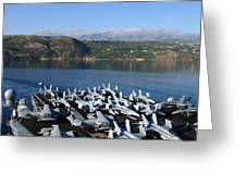 Into Port Greeting Card by Mountain Dreams