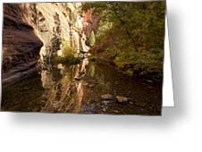 Into The Canyon  Greeting Card by Saija  Lehtonen