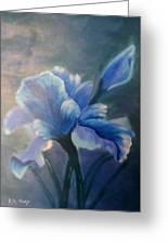 Iris Blue Greeting Card by Kay Novy