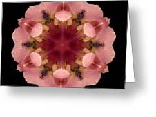 Iris Germanica Flower Mandala Greeting Card by David J Bookbinder