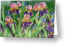 Iris Inspiration Greeting Card by Zaira Dzhaubaeva