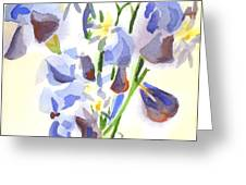 Irises Aglow Greeting Card by Kip DeVore