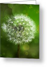 Irish Dandelion Greeting Card by Bill Tiepelman