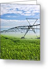 Irrigation Equipment On Farm Field Greeting Card by Elena Elisseeva