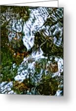 Isinglass Greeting Card by Jeff Sinon