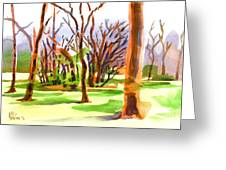 Island In The Wood Greeting Card by Kip DeVore