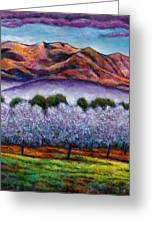 Italian Orchard Greeting Card by Johnathan Harris