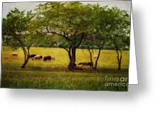 Its A Beautiful Life Greeting Card by Dorothy Pinder
