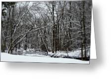 Its A Beautiful Winter Greeting Card by Kay Novy