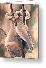 Its About Trust - Koala Bear Greeting Card by Suzanne Schaefer