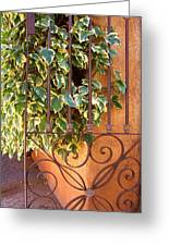 Ivy And Old Iron Gate Greeting Card by Ben and Raisa Gertsberg