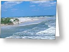 Jacksonville Florida Greeting Card by Millard H. Sharp
