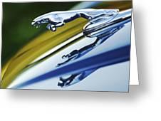 Jaguar Car Hood Ornament Greeting Card by Jill Reger