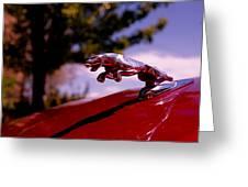 Jaguar Greeting Card by Rona Black