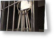 Jail Cell Blues Greeting Card by Allan Swart