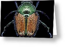 Japanese Beetle Bedazzled Greeting Card by R  Allen Swezey