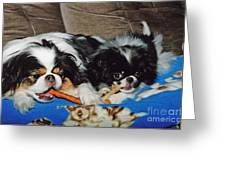 Japanese Chin Dogs Hanging Out Greeting Card by Jim Fitzpatrick