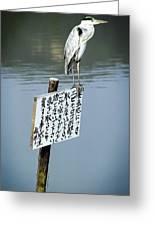 Japanese Waterfowl - Kyoto Japan Greeting Card by Daniel Hagerman