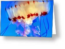 Jellyfish 3 Greeting Card by Dawn Eshelman