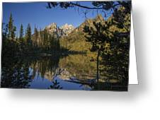 Jenny Lake Greeting Card by Michael J Bauer