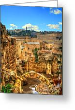 Jerusalem's Old City  Greeting Card by Michael Braham