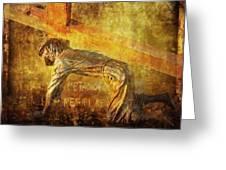 Jesus Falls Again Via Dolorosa 7 Greeting Card by Lianne Schneider