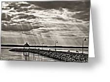 Jetty And Sunrays In Bw Greeting Card by Greg Jackson