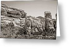 Joshua Tree - 11 Greeting Card by Gregory Dyer